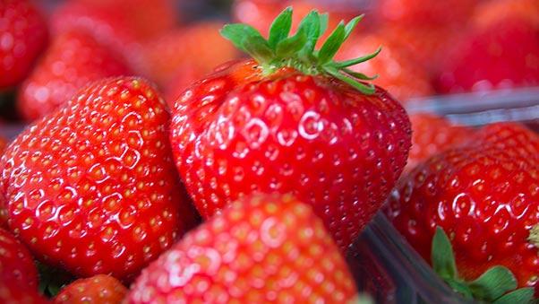 De Kalverstraat - Verse aardbeien